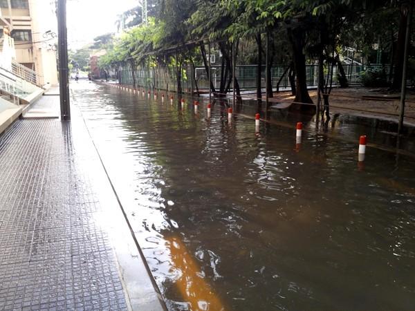 тропический дождь фото